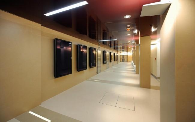 Biblioteca Civica S. Pietroburgo Marmi Giallo Valencia, Statuario, Rosso Alicante, Bianco Carrara